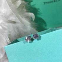 2019秋冬着こなし方おすすめ  ティファニー Tiffany&Coおしゃれで機能性の高い ピアス オシャレな秋冬コーデスタイルenshopi.com sn:TT5Hny-1