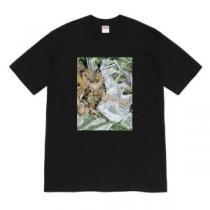 半袖Tシャツ 憧れブランドの2020春夏  3色可選 シュプリーム 春夏スタイルにピッタリ SUPREME  お洒落重視の方へenshopi.com sn:5jSbOv-1